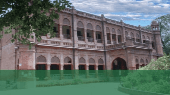 https://lcci.pk/wp-content/uploads/2021/09/Colleges-Lcci-Main-Categories-green-lower-third-340-x190.png