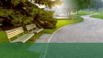 https://lcci.pk/wp-content/uploads/2021/09/Parks-Lcci-Main-Categories-green-lower-third-340-x190.png